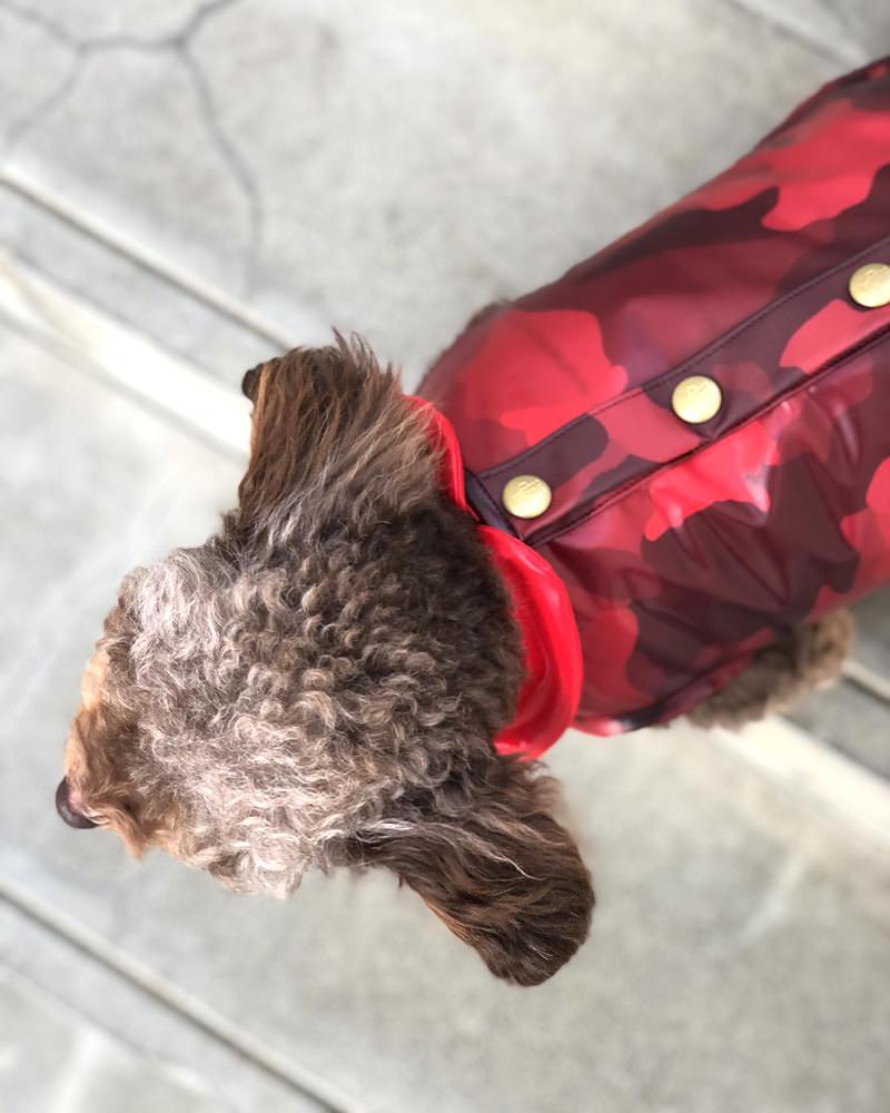 MONDOG 犬用ダウン3WAY Sサイズ 在庫商品 レッド